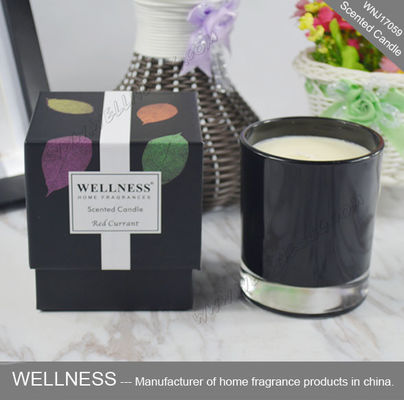 NO Toxins Natural Scented Candle Water - Soluble With No Petro Soot Emissions